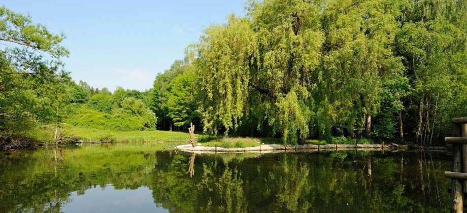 Wildpark Poing - Park & Tiere